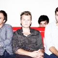 Grizzly_Bear_Barbara_Anastacio_2012