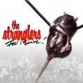 the stranglers feel it live