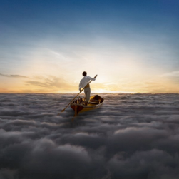 pink floyd endless river 2014